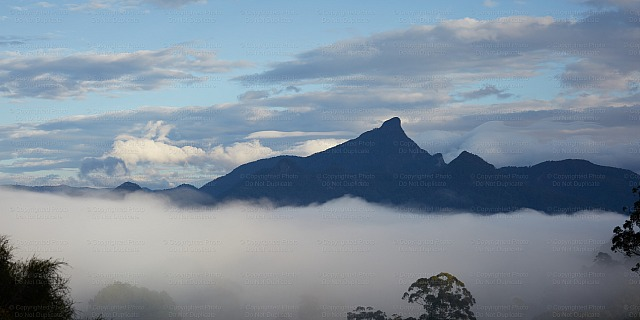 Mount Warning 9091