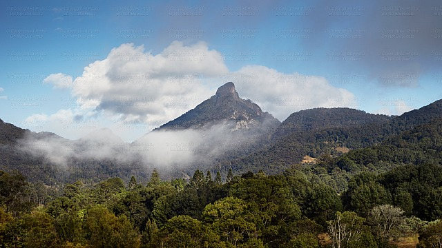Mount Warning 9915