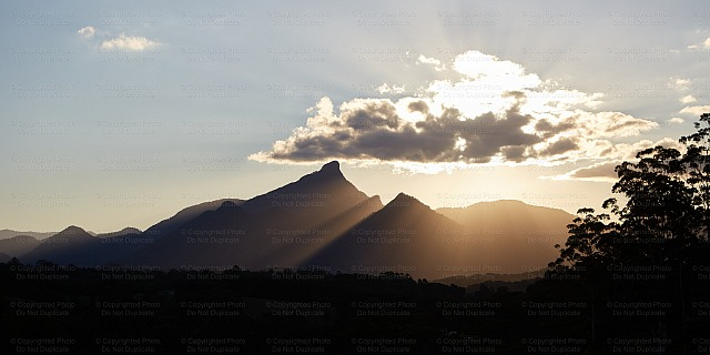 Mount Warning 1151