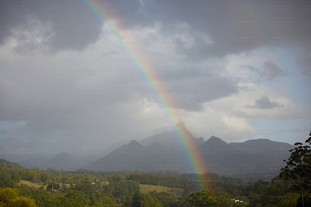 Mount Warning 10971