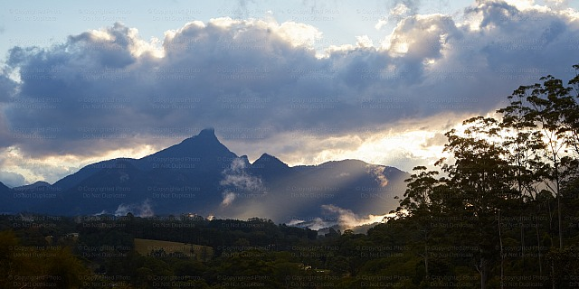 Mount Warning 1902