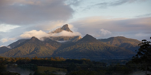 Mount Warning 9055