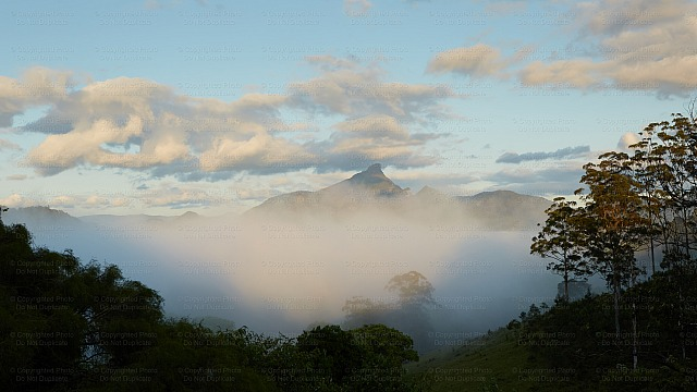 Mount Warning 5175