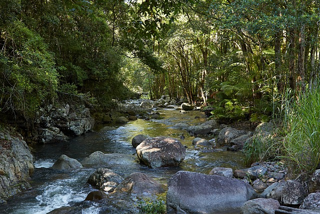 Tweed Valley Creek 2