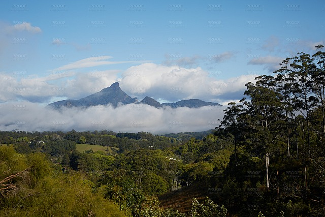 Mount Warning 5616